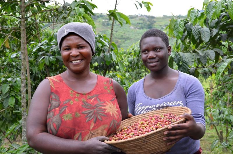 Productora cafè Birungi Jesca a Uganda.