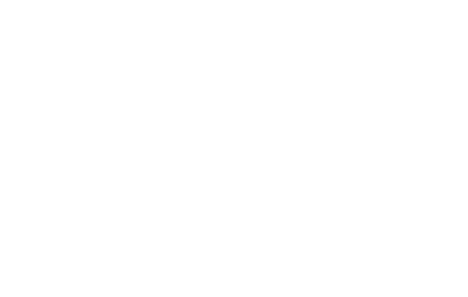 logo fets